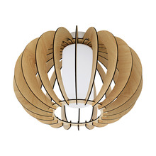 Eglo Canada 95597A - 1L Ceiling Light