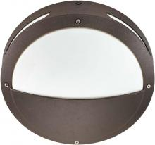 "Nuvo 60-2548 - Hudson ES - 2 Light 18w GU24 - 13"" Round Hooded Wall / Ceiling Fixture"